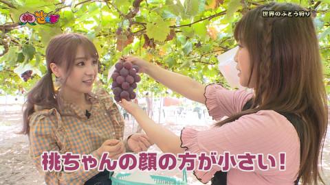 桃乃木かな 羽咲みはる