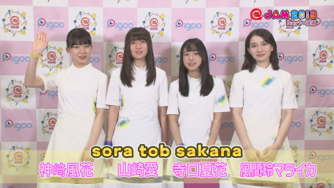 MEY マジカル・パンチライン 虹のコンキスタドール 愛乙女☆DOLL sora tob sakana Task have Fun わーすた ベイビーレイズJAPAN