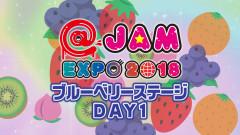 @JAM EXPO 2018~ブルーベリーステージ day1