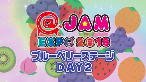 @JAM EXPO 2018~ブルーベリーステージ day2