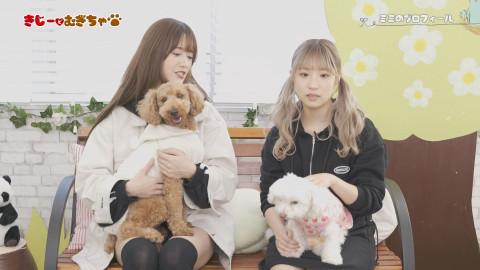 希島あいり むぎちゃ 栄川乃亜 ミミ